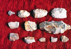 The third rock from the left, top row, is a Clearfork Gouge.