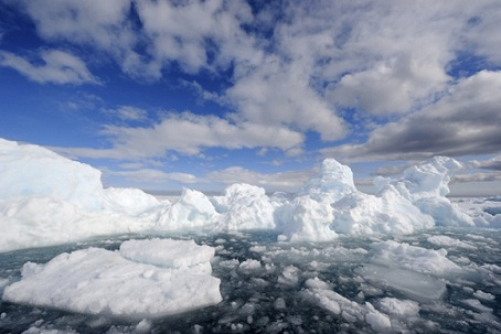 The melting of Arctic sea and land ice will quickly raise the earth's temperature, bringing climate changes that will prove deadly to life. Conditions will remain for hundreds of years, causing the death of many species of plant and animal life, including humans.